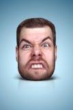 Смешной портрет шаржа Стоковое Фото