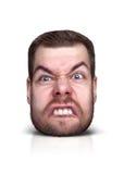 Смешной портрет шаржа Стоковые Фото