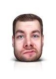 Смешной портрет шаржа Стоковая Фотография RF
