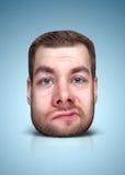 Смешной портрет шаржа Стоковое Изображение RF