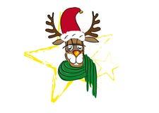 смешной северный олень Стоковое Изображение RF