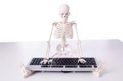 Смешной скелет работая на компьютере Стоковое фото RF