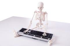Смешной скелет работая на компьютере Стоковая Фотография