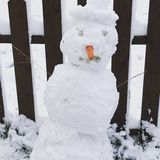 Смешной снеговик стоковое изображение