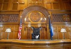 Смешной судья собаки, зал судебных заседаний, закон, зал суда стоковое изображение
