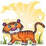 смешной тигр Стоковые Изображения RF