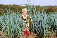 Смешной лук-порей рудоразборки девушки preschooler в поле Стоковое Изображение RF