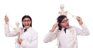 Смешной учитель при скелет изолированный на белизне Стоковое Фото