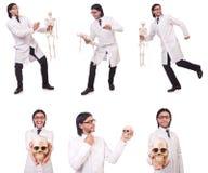 Смешной учитель при скелет изолированный на белизне Стоковая Фотография