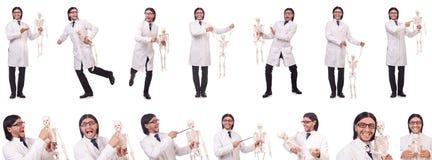 Смешной учитель при скелет изолированный на белизне Стоковые Фото