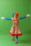 Смешной шаловливый клоун Стоковая Фотография