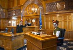 Смешной шут суда, юрист, судья, закон стоковые фотографии rf