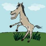 Смешной эскиз лошади Стоковое фото RF