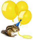 Смешной chipmunk надувая желтые воздушные шары Стоковое Изображение