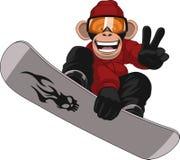 Смешной Snowboarder обезьяны Стоковая Фотография