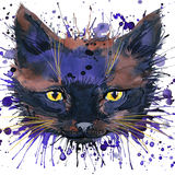 Смешные графики футболки котенка, смешная иллюстрация котенка с акварелью выплеска текстурировали предпосылку Стоковые Изображения