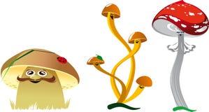 Смешные грибы Стоковые Фотографии RF