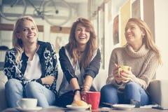 Смешные девушки Друзья дерева молодые женские Стоковые Изображения RF