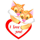Смешные и милые пары меховых котят имбиря Вейл поздравительной открытки Стоковая Фотография
