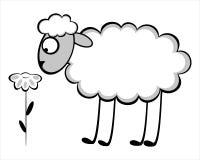 Смешные молодые овцы иллюстрация вектора