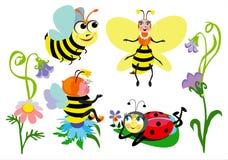 смешные насекомые Стоковые Изображения RF