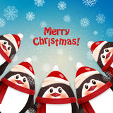 смешные пингвины зима белизны снежинок предпосылки голубая Стоковая Фотография RF