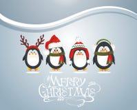 смешные пингвины Стоковые Изображения