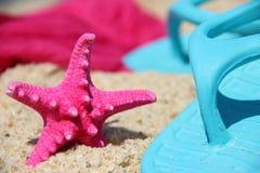 Смешные розовые морские звёзды на seacost стоковые фотографии rf