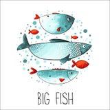 Смешные рыбы в круге Стоковое Изображение