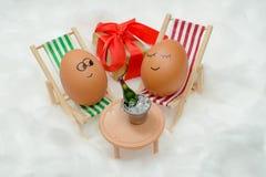 Смешные симпатичные яичка в снеге с подарочной коробкой и бутылкой вина Стоковое Изображение