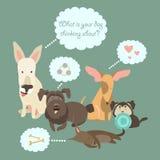 Смешные смешанные собаки породы с пузырем речи иллюстрация вектора