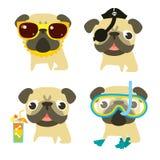 Смешные собаки мопса в различной ситуации летнего отпуска Стоковые Фотографии RF