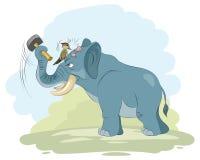 Смешные сцены с животными Стоковые Фото