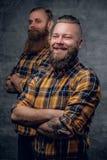 2 смешных бородатых люд одели в рубашке шотландки представляя на сером ба Стоковые Фотографии RF