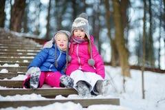 2 смешных прелестных маленьких сестры имея потеху совместно в парке зимы Стоковые Фотографии RF