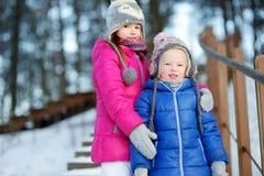 2 смешных прелестных маленьких сестры имея потеху совместно в парке зимы Стоковое Изображение