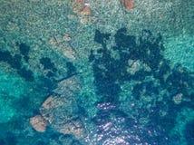 смещение удя среднеземноморскую сетчатую туну моря стоковая фотография rf