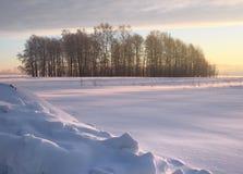 Смещения снега с деревьями на равнине зимы стоковое изображение