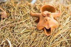 Смеясь над гончарня буйвола на деревянной предпосылке стоковое изображение rf