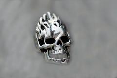 смеясь над череп Стоковые Изображения RF
