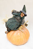Смеясь над ведьма на тыкве Стоковые Фото