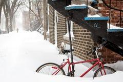 Смеясь над снег Стоковое Изображение