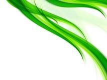 смогите загонять различные флористические используемые цели в угол иллюстрации Стоковое Изображение