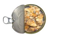 Смогите изолированных clams, осмотрите сверху стоковые изображения rf