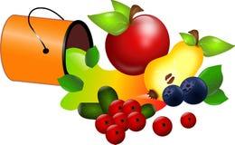 Смогите плодоовощей Стоковая Фотография RF