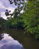 Смогло a на воде Стоковая Фотография RF