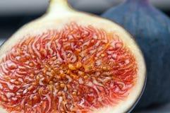 Смоква половинная с макросом семян Стоковая Фотография RF