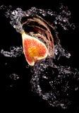 Смоквы в брызге воды стоковое изображение rf