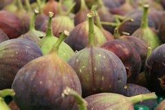 смоквы Стоковая Фотография RF