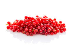 Смородина пука зрелая красная изолированная на белизне стоковая фотография